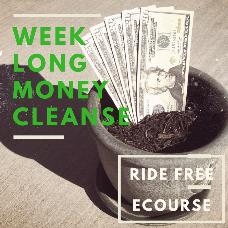 Want more? Free Money Cleanse eCourse - sign on up!